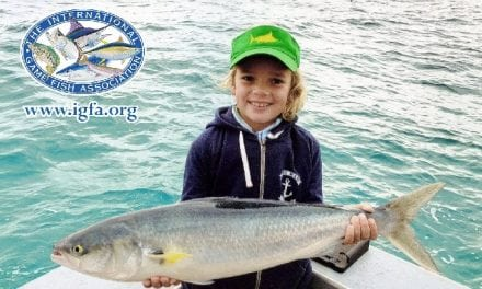 Great Catches From The IGFA From July!