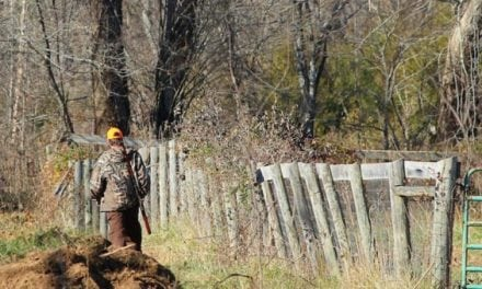 Hunting Ethics: Would You Shoot Across Property Lines if Nobody was Around?