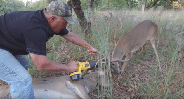 Keith Warren Saves Two Locked-Up Bucks with an Electric Saw