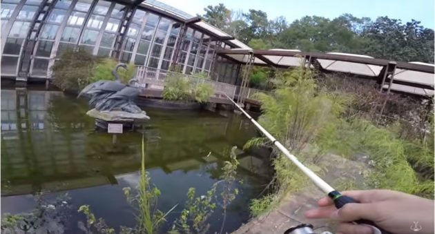 Video fishing an abandoned building s old koi pond for for Bass pond construction