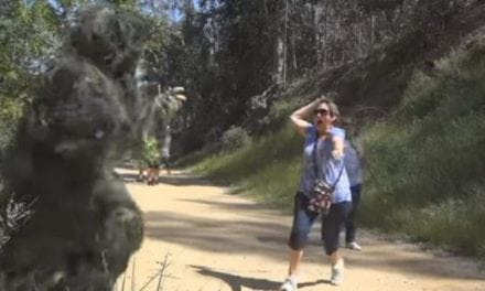 Video: These Ghillie Suit Scares Are Hilarious