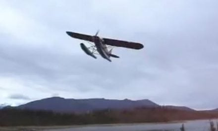 Want to Go Antler Shed Hunting? Use an Airplane!