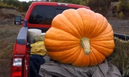 What Happens When You Pack a 425-Pound Pumpkin Full of Tannerite?