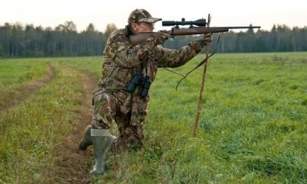 5 Hunting Rifles Guaranteed To Get The Job Done Without Breaking The Bank