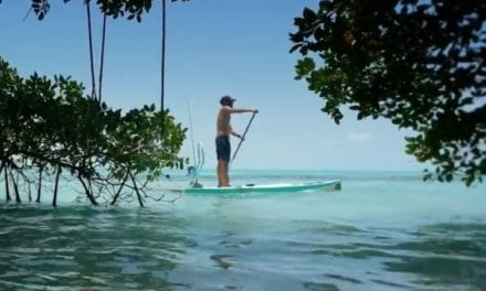 BOTE Shows Us What Fly Fishing in Belize Is All About