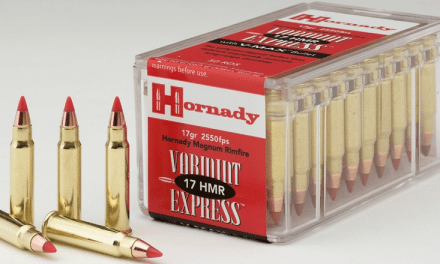 Breaking Down the .17 HMR Rifle Cartridge
