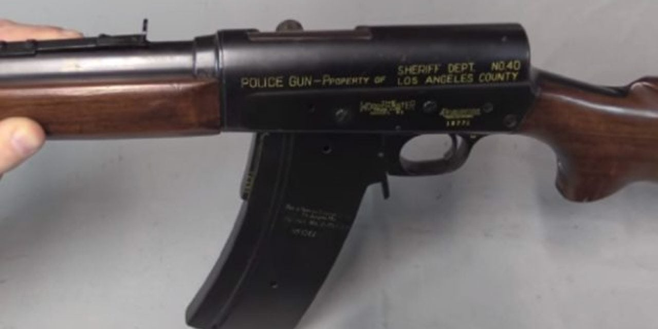 Check Out This Remington Model 81 Special Police Rifle