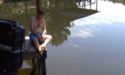 Fish Pulls Sleeping Fisherman Into the Water