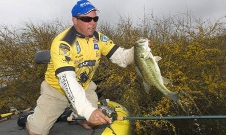 Flipping Shallow Cover Works Well For Big Spring Bass