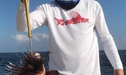 Giant Mississippi Record Red Lionfish Caught
