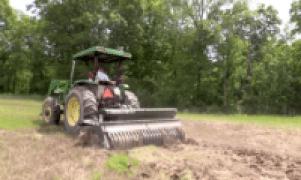 No, Food Plots for Deer Hunting Are Not New or Terrible