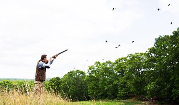 On the Wing: The Best Wild Bird Hunting Lodges in New England