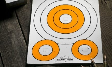 Rite in the Rain Storm Sight All-Weather Targets