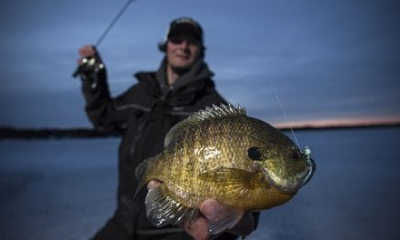 Rock the Glazba: New Must-Have Tungsten Ice Jig