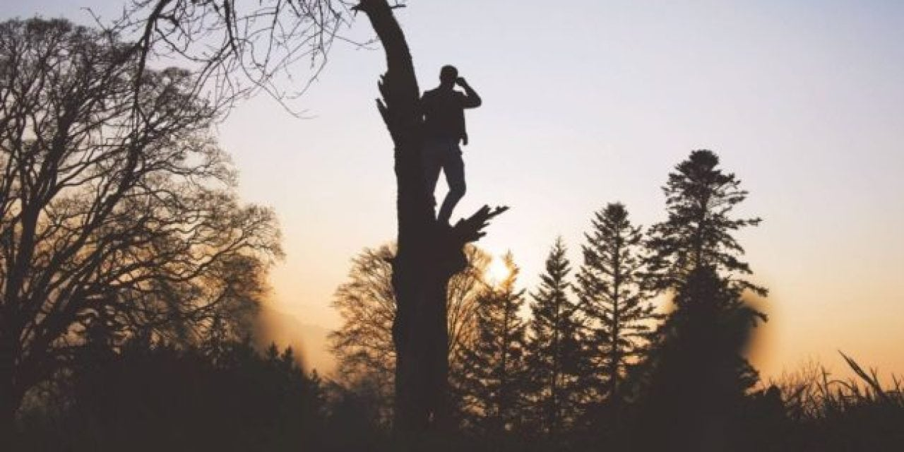 What Not To Do When You Fall Out of Your Treestand