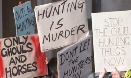 10 Facts Anti-Hunters Refuse to Acknowledge