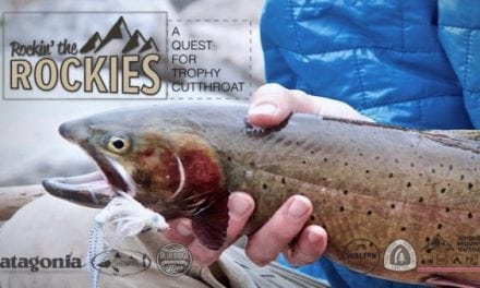 Alpine Cutthroat Trout Fishing Like You Have Never Seen Before