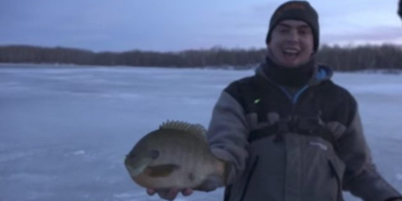 Check Out These Giant North Dakota Bluegills