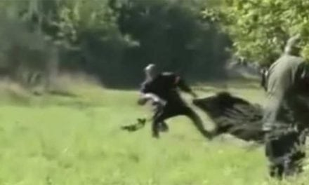 Feel the Intensity of These Shocking Hunting Moments Caught on Camera