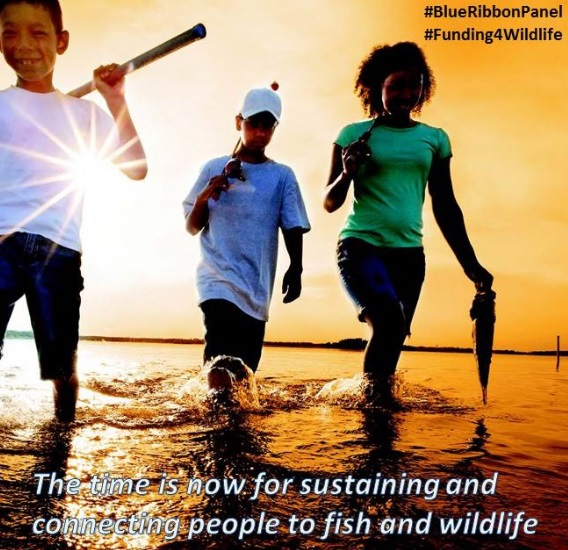 FWC endorses national strategy aimed at conserving fish, wildlife
