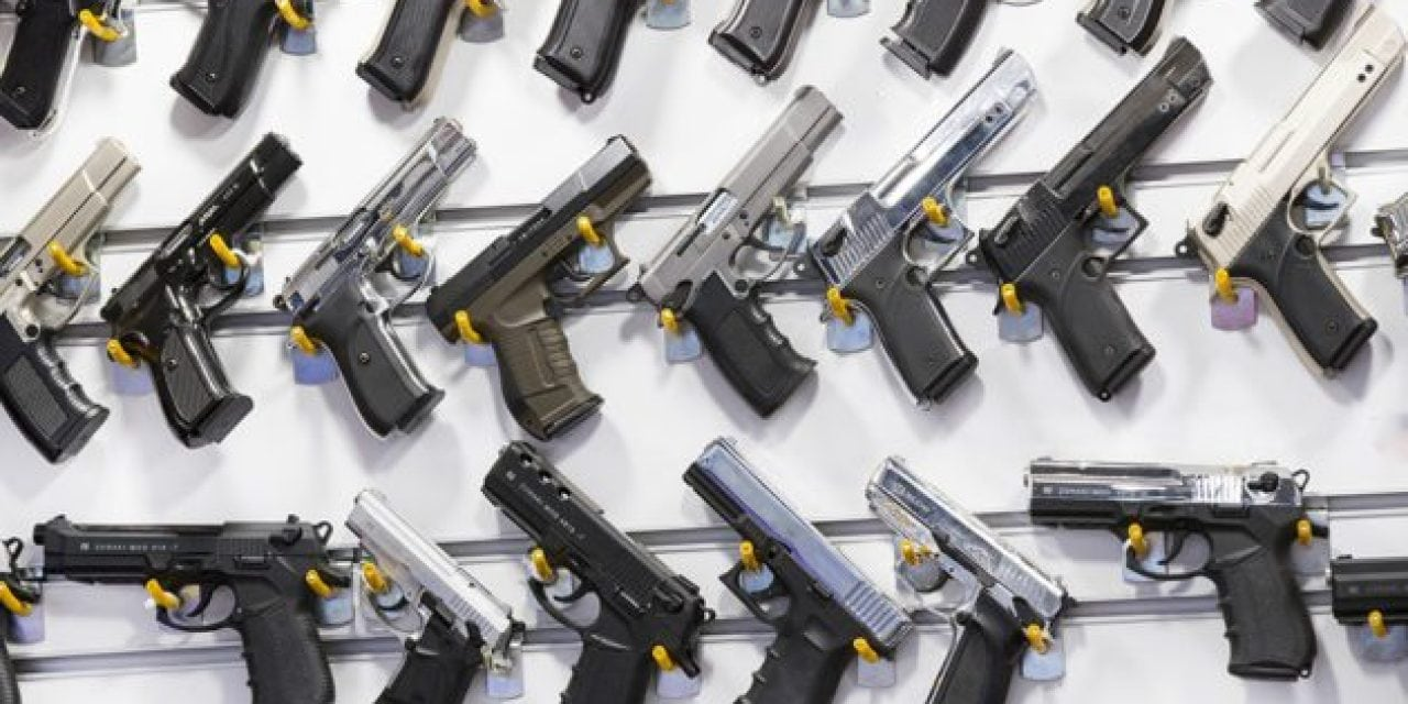 Gun Bills Pass Through the Michigan Senate: Here's What to Know