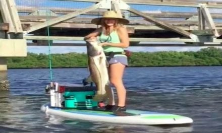 Here's How You Land a 40-Inch Snook from a Paddleboard