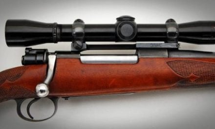 Here's What We Found to Be the Best Rifle Caliber for Deer
