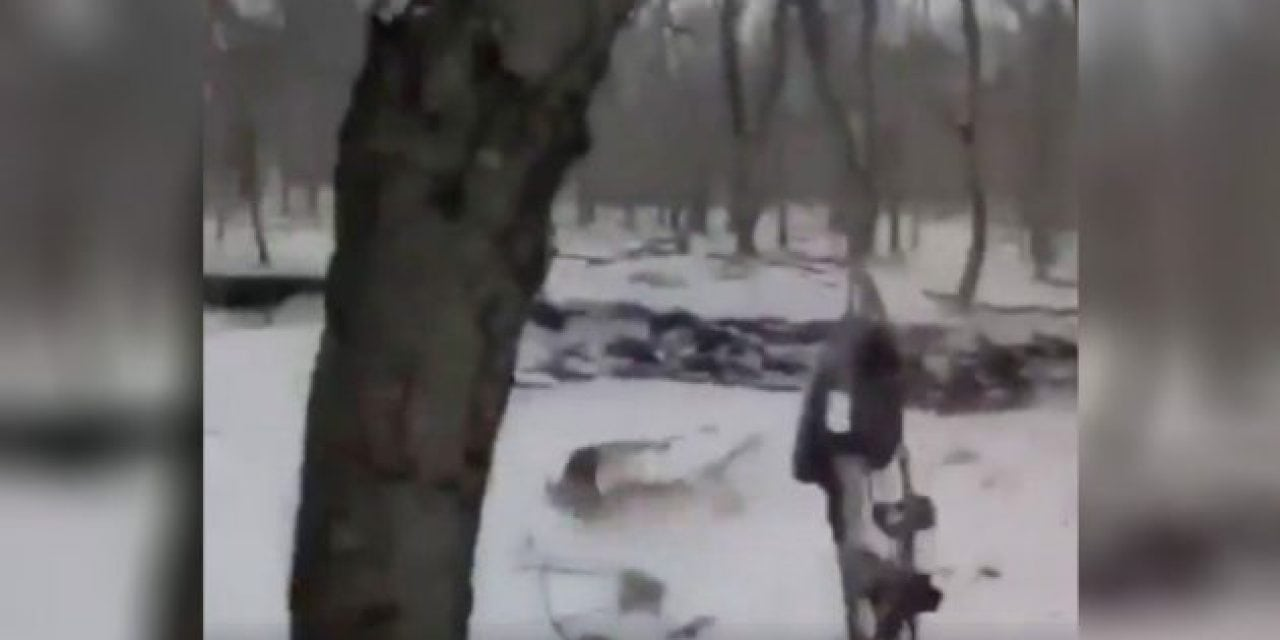 Incredible Running Shot with a Bow Is Impressive, but Probably Not Ethical