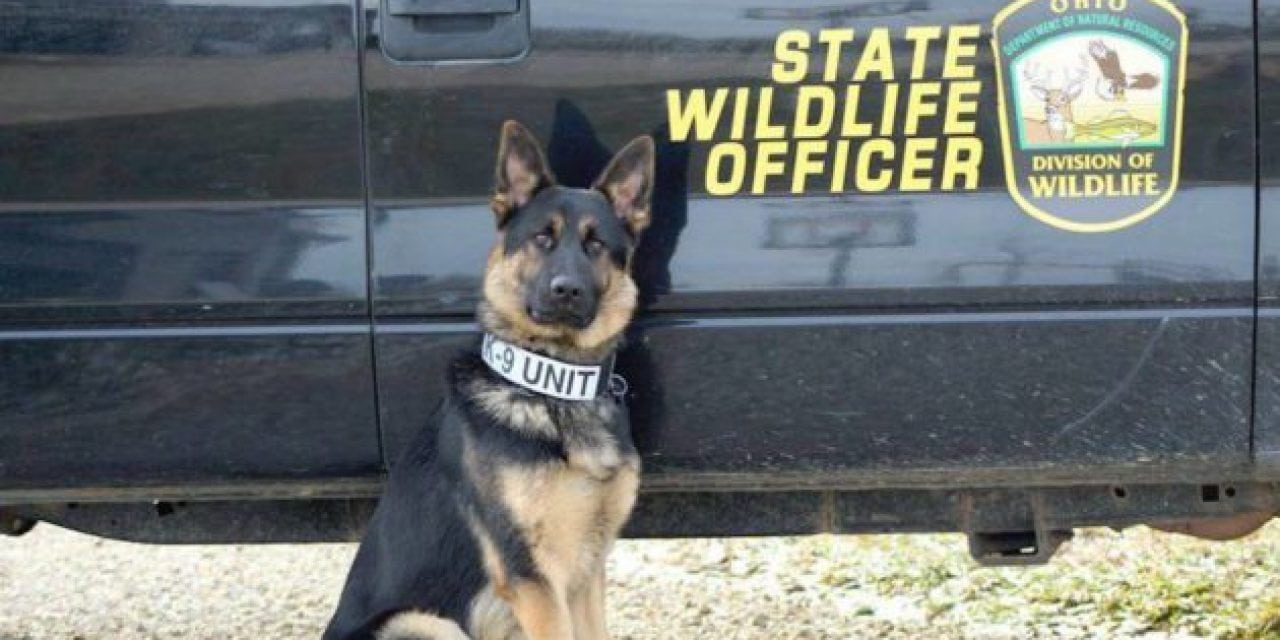 Ohio Division of Wildlife Will Be Using K-9's in 2018