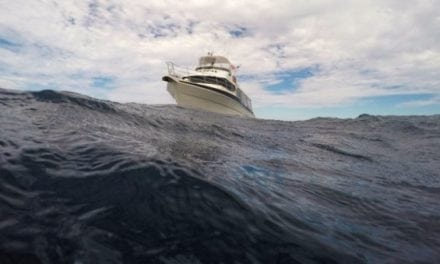 Picking the Right Deep Sea Fishing Charter For Your Group