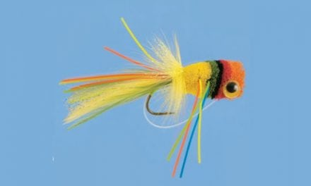 These 10 Flies Will Land You Monster Bass