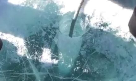 Think Your Local Ice Is Thick? Think Again…