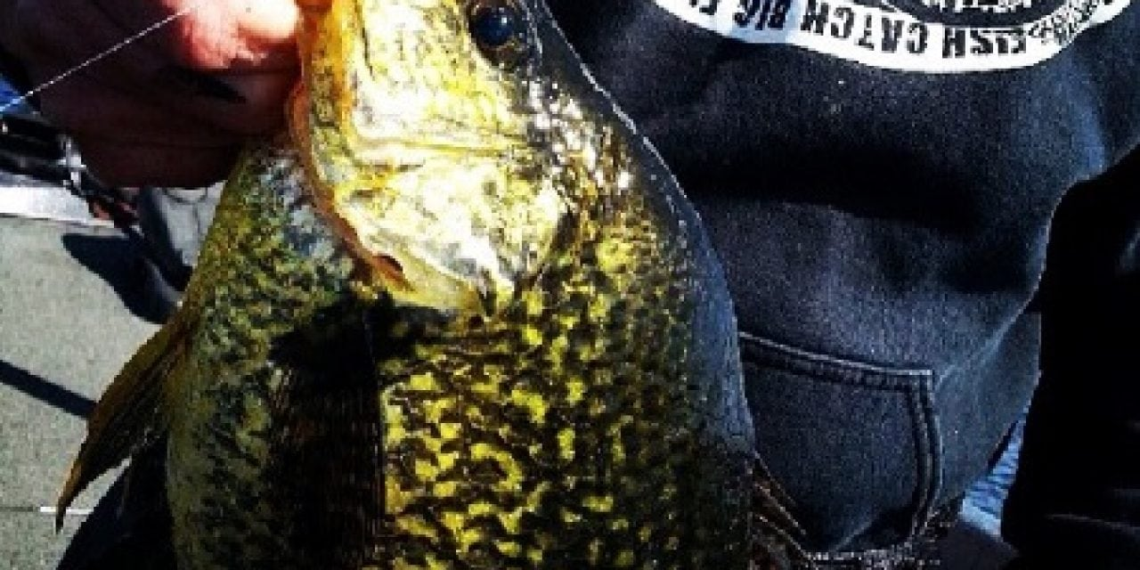 4 Tips for Finding and Catching Early Season Crappie