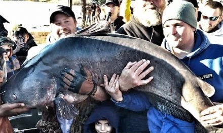 Does 141 Pounds Classify As A Monster Catfish
