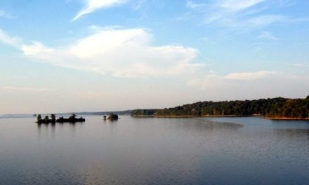 Five things to consider for reservoir smallmouth bass season in KY and TN