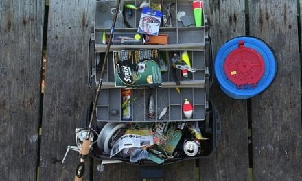Perfect Bait Rigs to Hook Trout Every Time