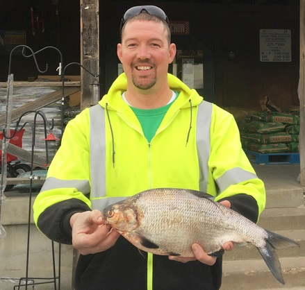 State-record gizzard shad landed in Missouri
