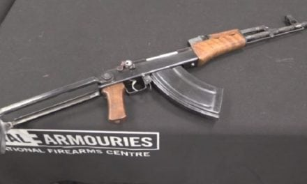 There's a Bolt Action, AK-47 Mutant Rifle? Yep!