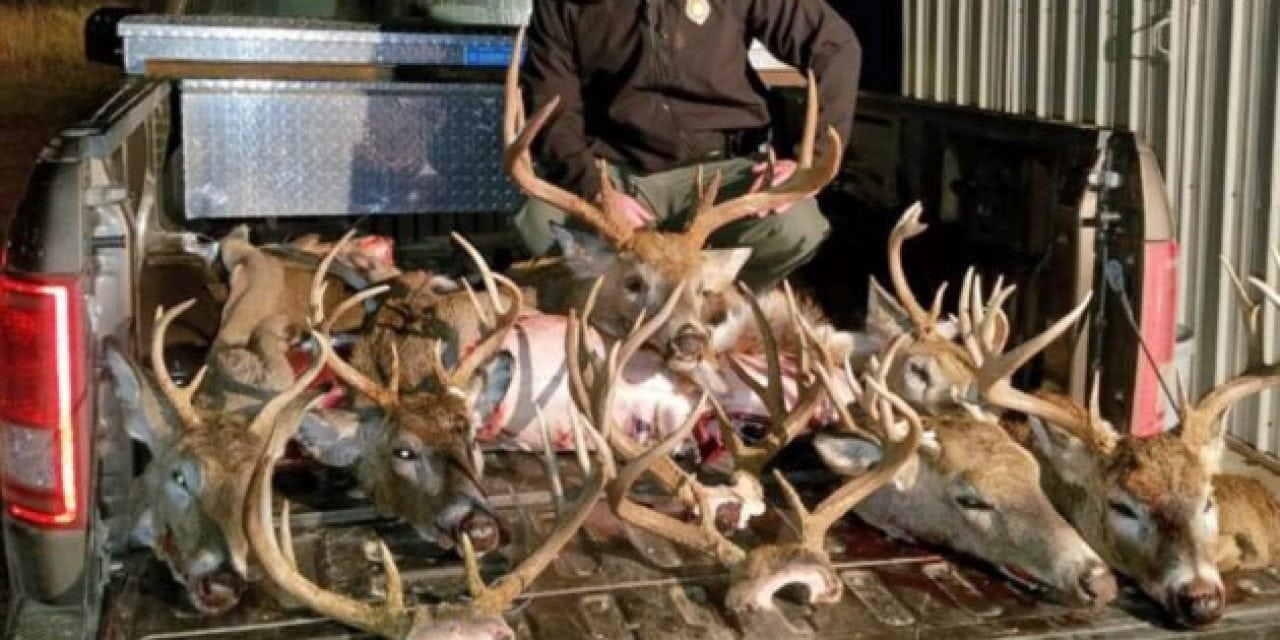 Two Nebraska Deer Camps Equal 17 Citations and $10,000 in Fines