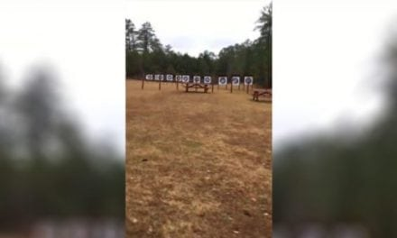 Is It Possible to Shoot an Accurate 100-Yard Shot with a Bow?