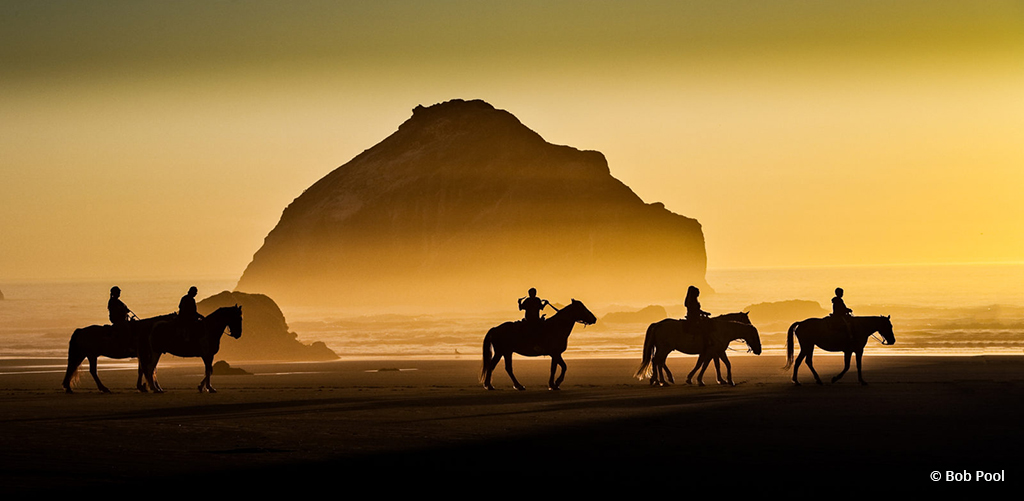 "Today's Photo Of The Day is ""A beach ride at sunset"" by Bob Pool. Location: Bandon, Oregon."