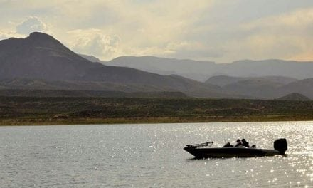 Arizona Tips for Preparing Your Boat for Summer