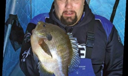 CLAM – BACK COUNTRY PANFISH