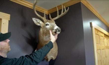 Finally! We Can Now Hang Our Deer Mounts in the Corner