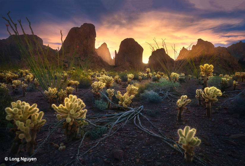 Improve your landscape photos to take winning images like this