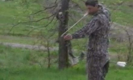 Is Tim Wells' Epic Archery Bumble Bee Shot Lucky or Just Plain Good?