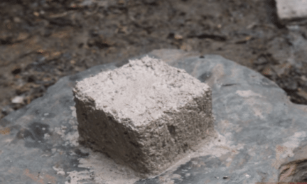 Primitive Technology: Making Lime from Snail Shells