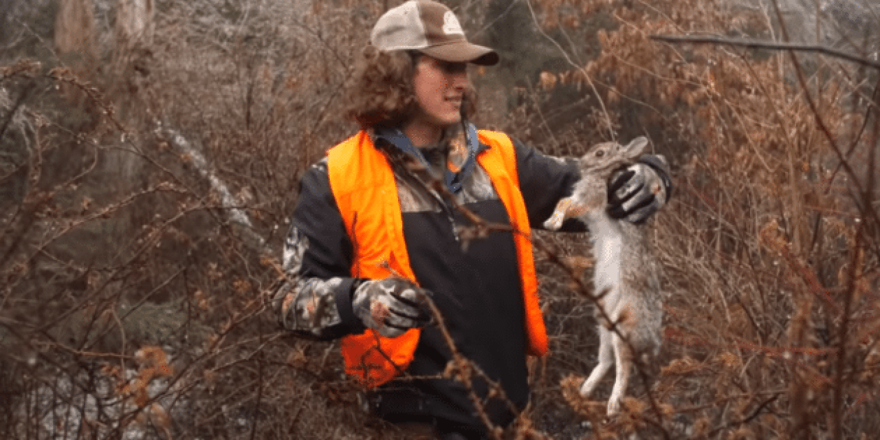 Rabbit Hunting: Kicking the Thick Brush for Bunnies