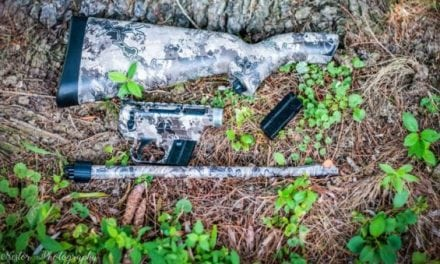 Sunday Gunday: 4 Bug-Out Bag Rifles That Will Keep You Alive