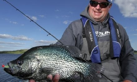 Top Tips for More Spring Crappie